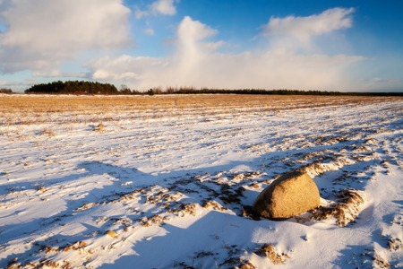 Winter field landscape with field covered by snow in Poland photo