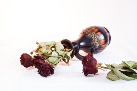 withered: Withered dry red rose flowers and jug Stock Photo