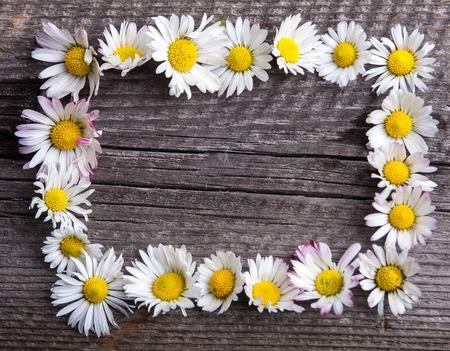 p�querette: Marguerites blanches sur vieille table en bois rustique Banque d'images
