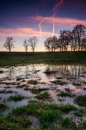 rural countryside: Wetlands landscape, puddles of water after sunset in rural countryside Stock Photo
