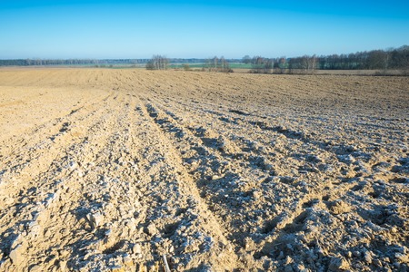 Beautiful plowed field autumnal landscape photographed in nice morning light under blue sky. Tranquil rural scene of plowed polish fields photographed with full frame camera. photo