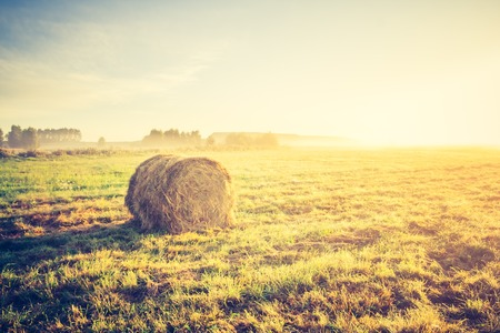 Beautiful meadow landscape with hay bales and morning fog at sunrise. Photo with vintage mood. photo