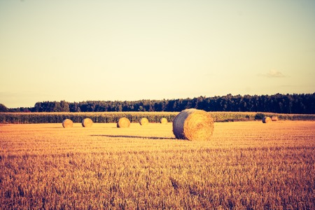Beautiful field landscape with straw bales after harvest. Photo with vintage mood. Photographed in Poland. photo