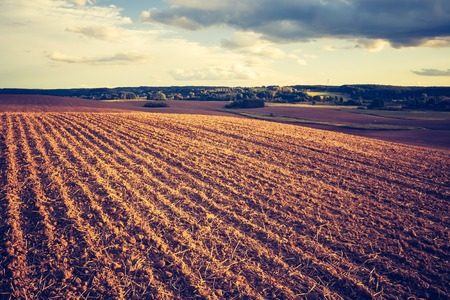 agriculture industry: Plowed field, early autumnal landscape. Photo with vintage mood effect Stock Photo