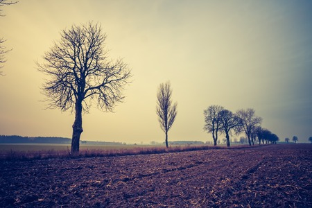 Countryside landscape with rural road to village. Photo with vintage mood effect Stock Photo