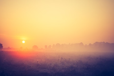 cross process: Beautiful photo of rural foggy meadow landscape photographed at sunrise. Landscape with vintage mood usefull as background.
