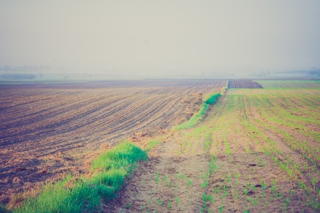lomography: Plowed field, early autumnal landscape. Photo with vintage mood effect Stock Photo