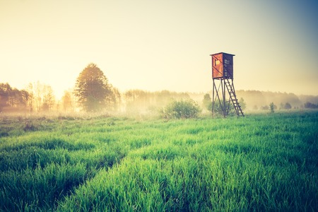 Beautiful morning landscape of foggy meadow with raised hide. Photo with vintage mood effect. Stockfoto