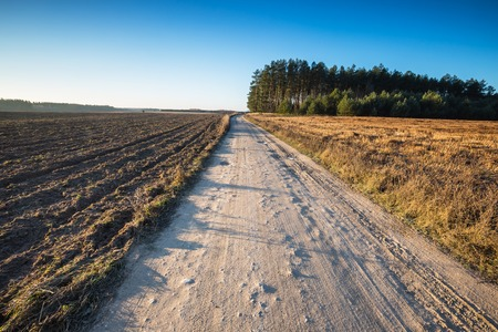 without clouds: Beautiful autumnal fields landscape with sandy rural road. Calm countryside landscape with good sunny weather and blue sky without clouds. Stock Photo