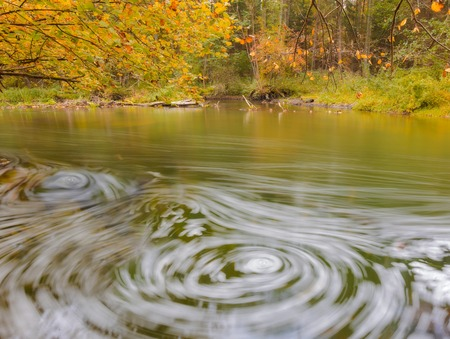 Beautiful landscape with wild river in autumnal forest. Wadag river in Poland, near Olsztyn city. Piece of landscape untouched by human hand. Tranquil scene with river. photo