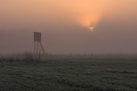 Beautiful sunrise over foggy meadow with raised hide. Tranquil rural scene photographed with full frame camera. photo