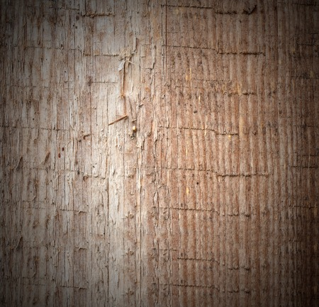 Old wooden colorful texture, useful as background photo