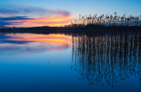 Beautiful sunset over calm lake. Colorful and vibrant landscape of lake shore with reeds. Tranquil landscape useful as background photo