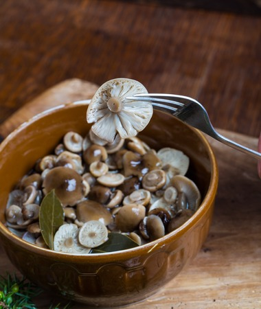Marinated honey fungus in brown bowl on wooden table. Studio shot. photo