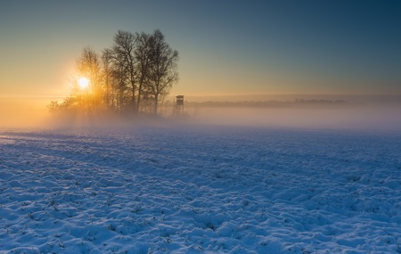 Beautiful winter sunrise or sunset landscape. Sun over agricultural field. Stock Photo
