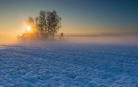 Beautiful winter sunrise or sunset landscape. Sun over agricultural field. Standard-Bild