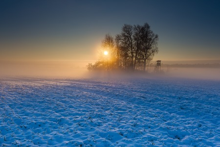 Beautiful winter sunrise or sunset landscape. Sun over agricultural field. photo