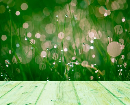 Wet springtime grass with bokeh effect and wooden floor. Abstract background with wooden planks photo