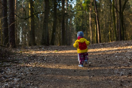 Toddler child walking by path in forest. Springtime forest landscape with small child walking alone on path. photo