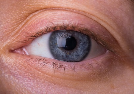 Woman lue eye in close up. Human eye in close up. photo