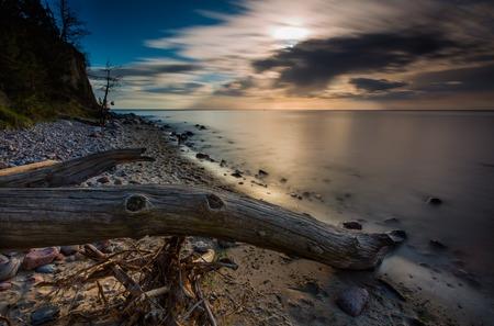 beautifu: Beautifu rocky sea shore with driftwood trees trunks at sunrise or sunset. Baltic sea shore