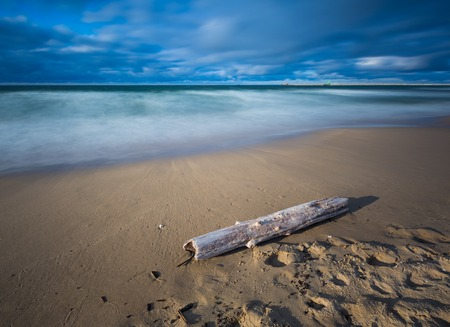 gorki: Beautiful sandy sea shore with driftwood. Baltic sea. Long exposure photo.