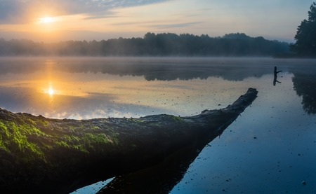 lake district: Beautiful sunrise over misty lake. Foggy morning over lake in Mazury lake district, Skand lake near Olsztyn in POland.