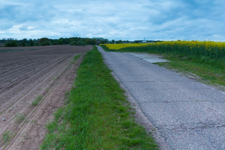 seson: Rural asphalt road near fields in springtime. Calm polish countryside Stock Photo