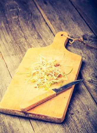 soja: Vintage photo of fresh lentil and wheat sprouts on cutting board