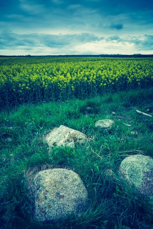 lomography: Vintage photo of green springtime meadow landscape with cloudy storm sky