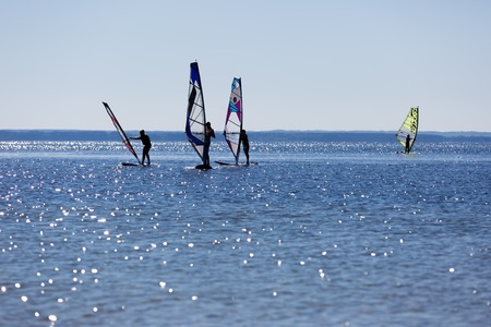 windsurfers: Windsurfers swimming in sea. Summertime photo with windsurfers swimming on water surface