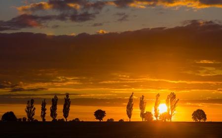 field sunset: Beautiful vibrant sunset over field.