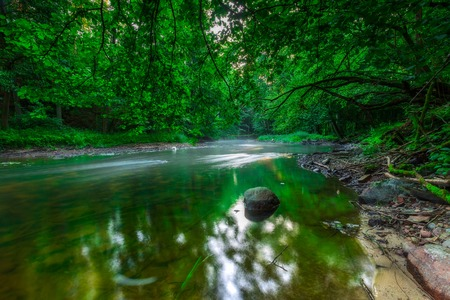 Beautiful wild river in summertime green forest photographed at sunrise. River Wadag near Olsztyn, Poland (Warmia and Mazury lake district) Stock Photo