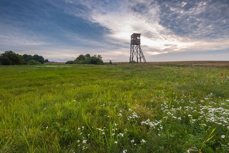 cloudy sky: Raised hide on morning meadow under cloudy sky. Beautiful rural landscape