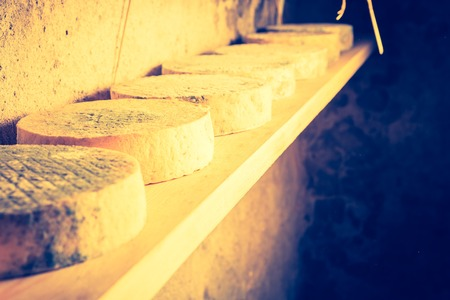 maturing: Vintage photo of cheese maturing in basement. French goat cheese. Studio shoot with mystic light effect.