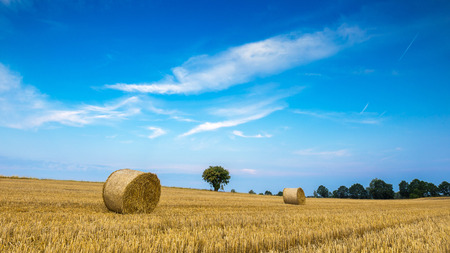 stubble: Stubble field with straw bales. Beautiful summertime rural landscape photographed in Poland.