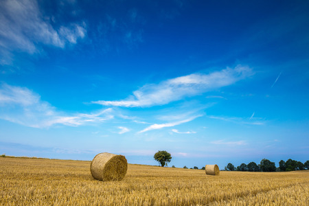 stubble field: Stubble field with straw bales. Beautiful summertime rural landscape photographed in Poland.
