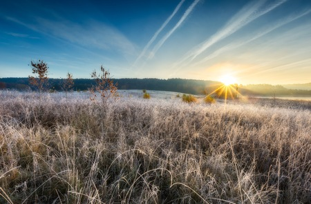Autumnal cold morning on meadow with hoarfrost on plants and beautiful colors. Polish landscape photographed in late october. Standard-Bild