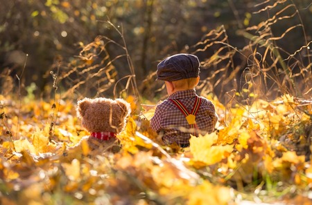 Little boy playing in autumnal forest. Caucasian child on grass and  fallen maple leaves in autumnal forest. Standard-Bild