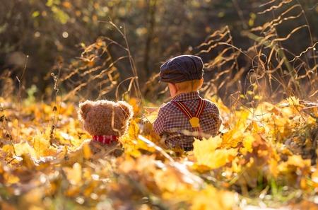 Weinig jongen die in herfstbos speelt. Kaukasisch kind op gras en gevallen esdoornbladeren in herfstbos.