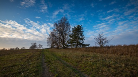 no snow: Landscape of fields at late autumn or winter with little snow and withered trees and grassland. Polish landscape Stock Photo