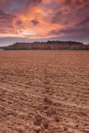 plowed: Plowed autumnal field landscape. Polish countryside Stock Photo