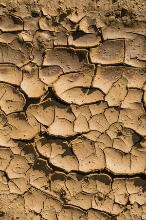 roughing: Close up of dried puddle. Abstract nature background