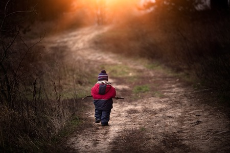 Little child (boy) playing outdoor in forest, walking in light rays on forest path. Beautiful childhood in nature. Stock Photo