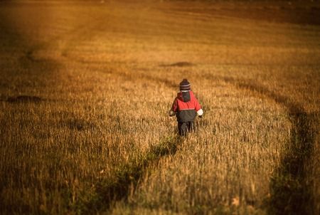 stubble field: Little child (boy) playing outdoor on stubble field. Beautiful childhood in nature.