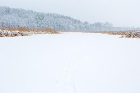 frozen lake: Winter landscape of frozen lake covered by snow. European lake frozen at wintertime.