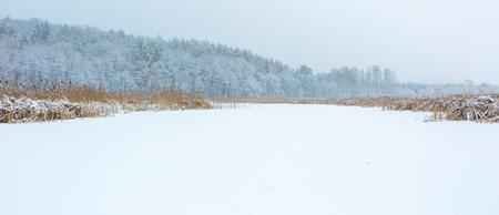 frozen winter: Winter landscape of frozen lake covered by snow. European lake frozen at wintertime.