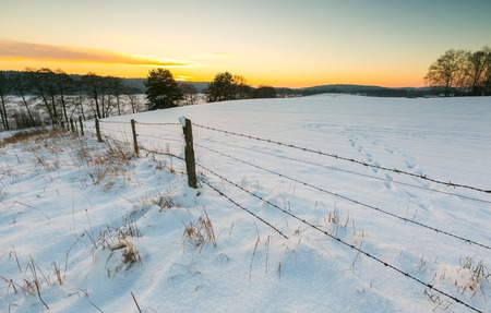 barbed wire fence: Beautiful winter fields, trees and barbed wire fence landscape. Countryside  under snow with sunset light.