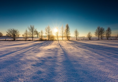 Beautiful cold morning on snowy winter countryside. Winter trees and sun. Polish countryside at snowy winter.