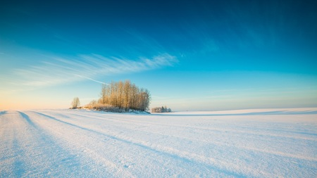 Winter snowy field landscape. Polish fields after blizzard.